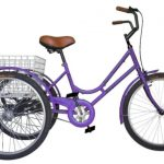 tricicleta maja morado