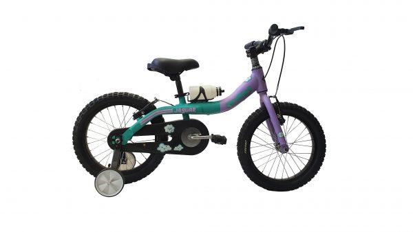 Skybike16Verde-Lila