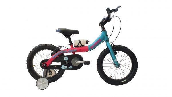 skybike16Fuxia-Azul
